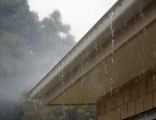 How to Clean Your Gutters to Prepare for Fall Rain